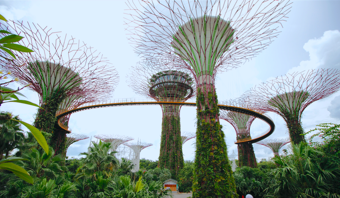 Garden by the bay Singapura