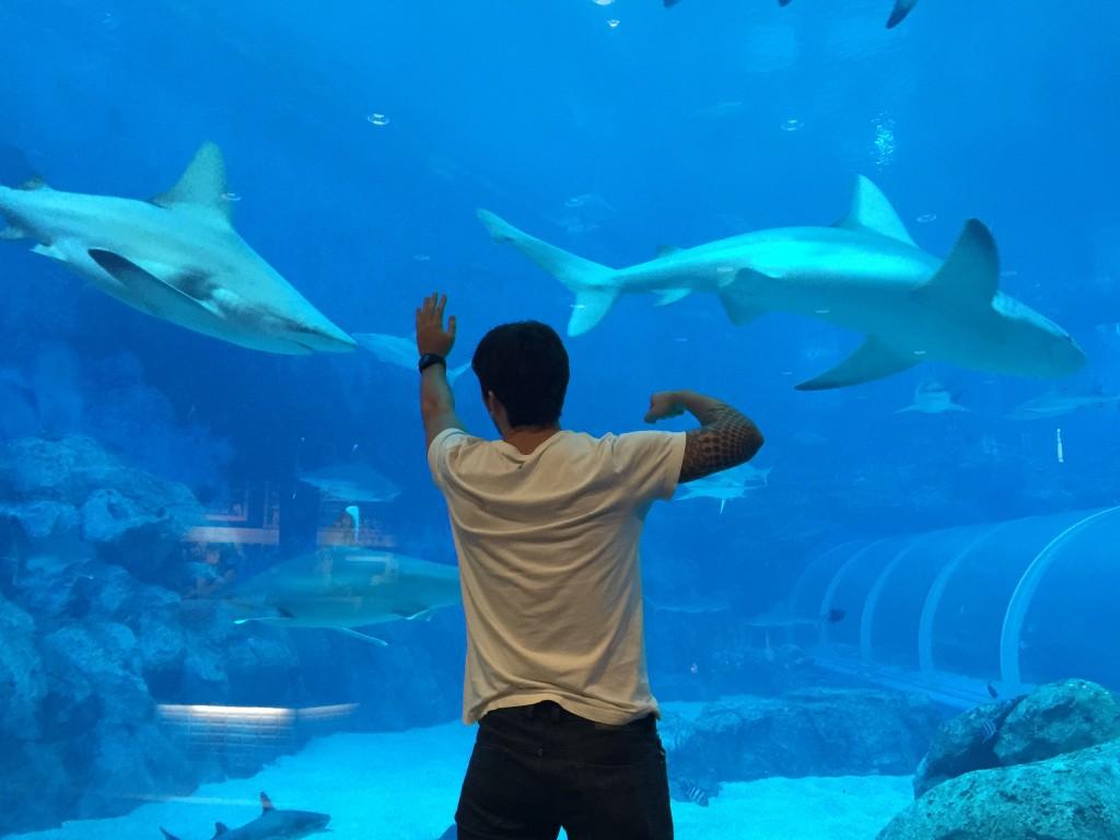 Sea World Bangkok