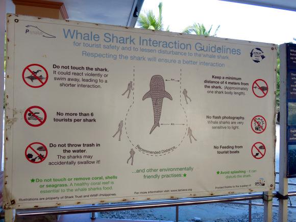 Como Interagir Com Os Tubarões https://sociorocketnewsen.files.wordpress.com/2016/02/img_2353.jpg?w=580&h=435