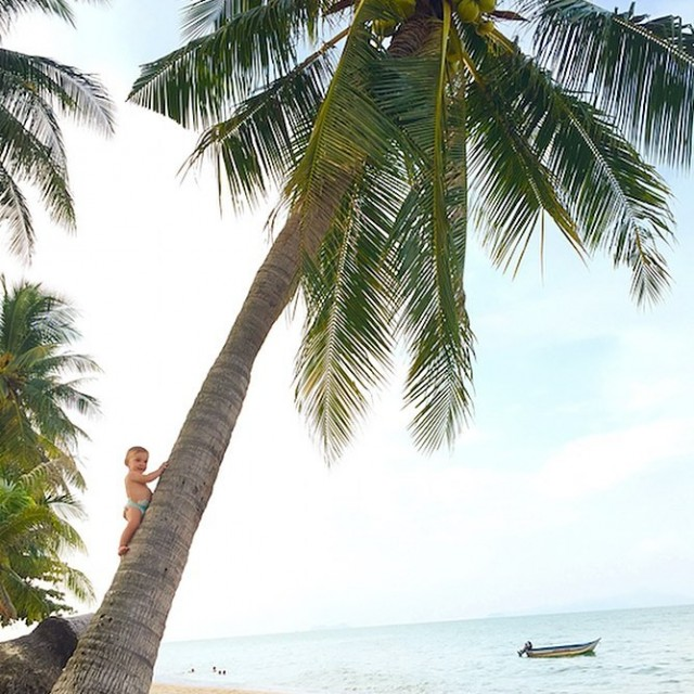 KoSamui  Thailand Nunca sonhei conhecer a Tailndia Nunca mesmohellip
