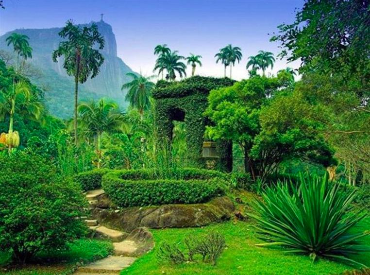 Jardim Botanico Rio Brasil