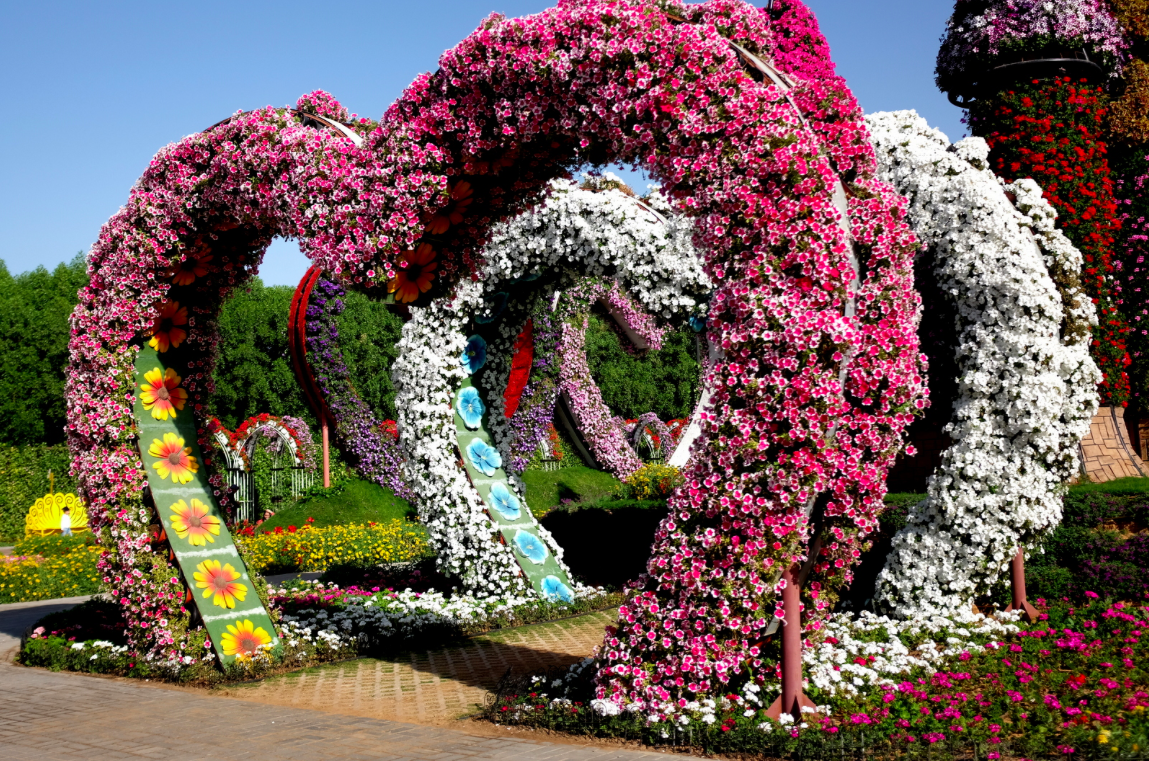 Miracle Garden Duabi