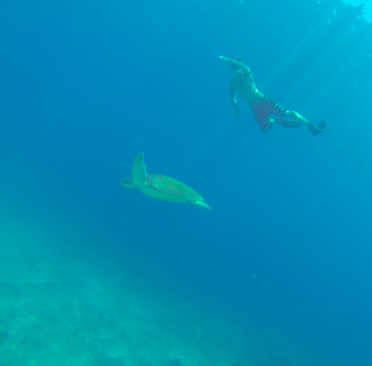 Bali Gili Lombok mergulho