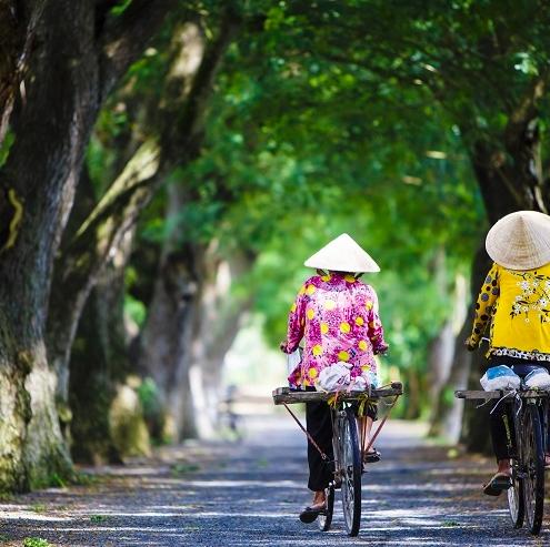 bicicleta templos angkor wat cambobja