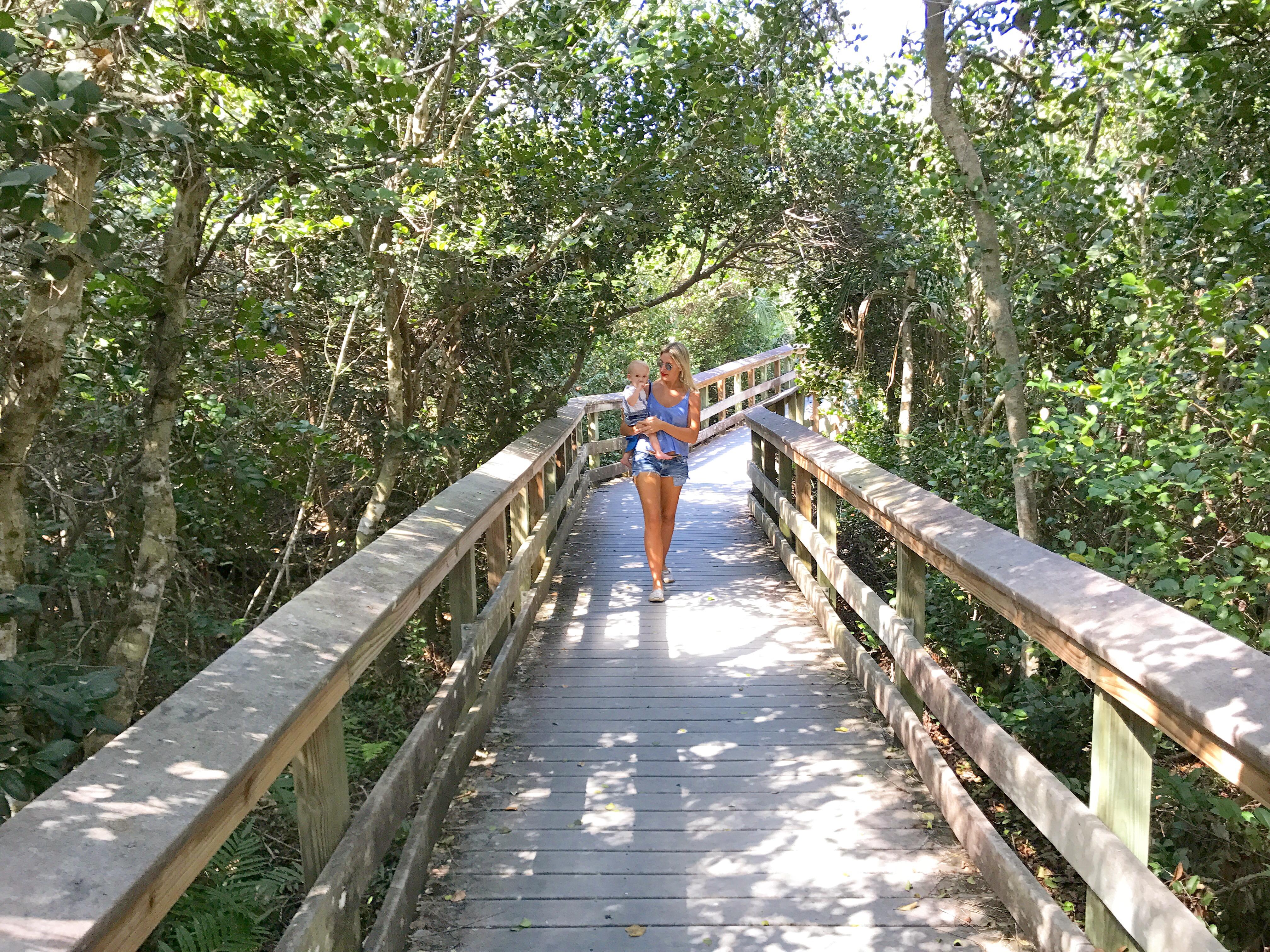 Parque dos everglades Miami