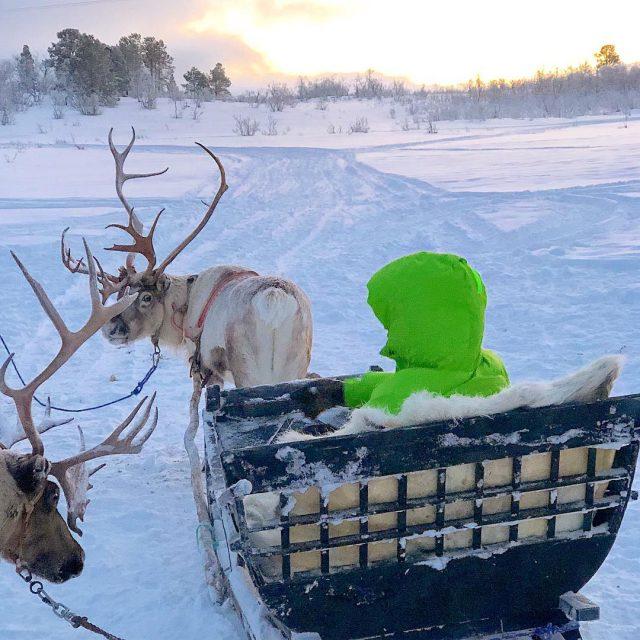 Troms  Norway Andar de treno num frio de 15Chellip