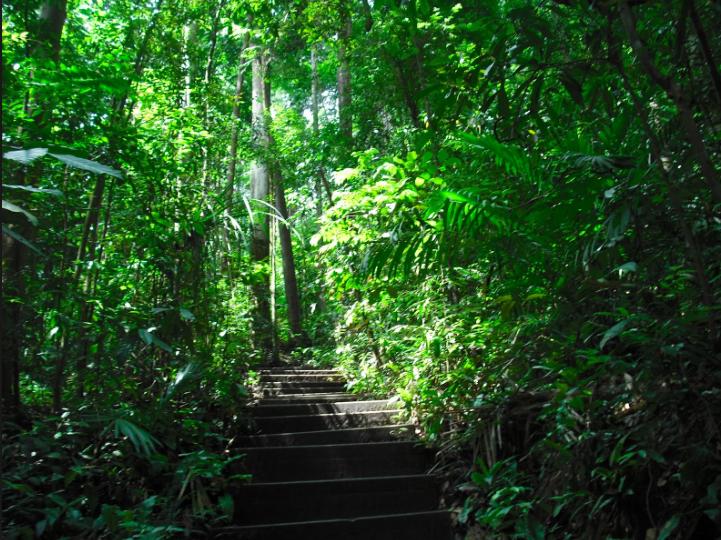 Reserva Singapura