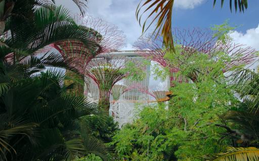 Singapura | Guia completo para viajar