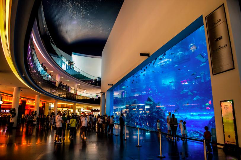 Aquarium entre o espaço privado do aquário e o shopping