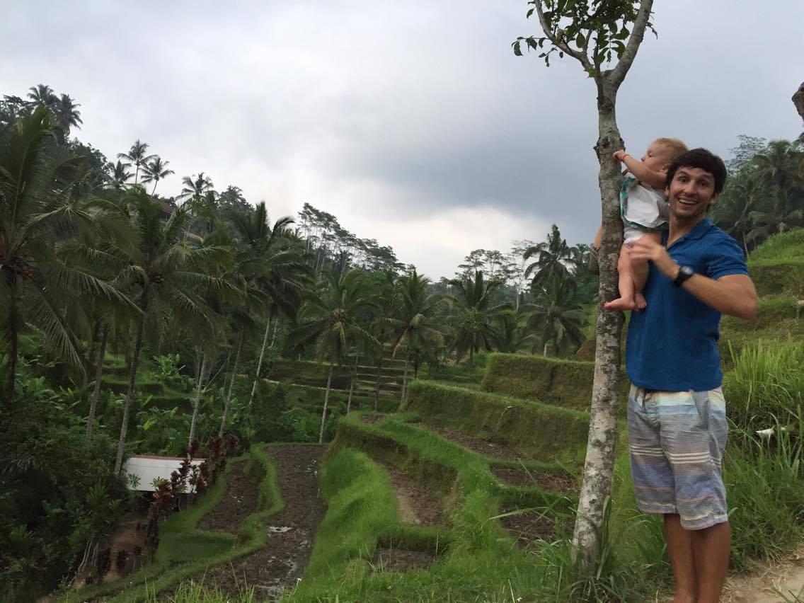 Campo de arroz Bali