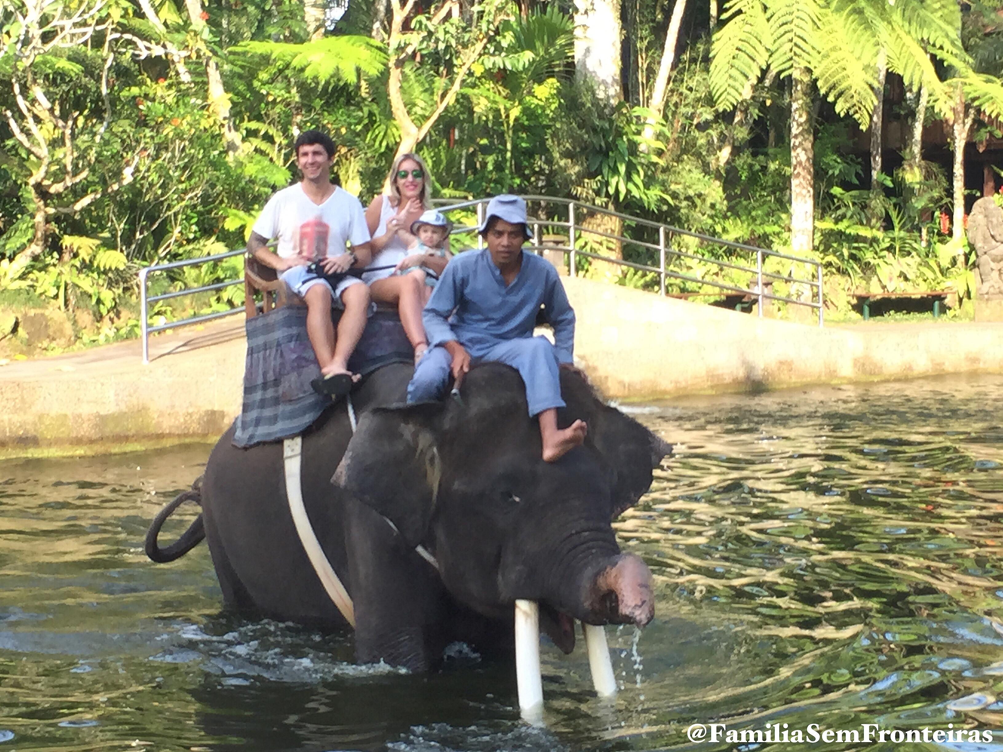 Elefante Ubud Bali