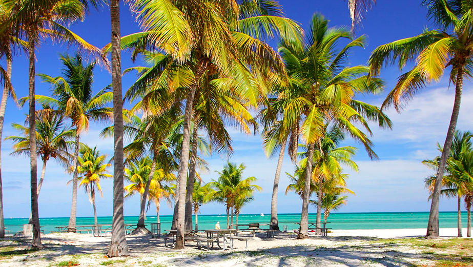 Crandon Park beach Miami