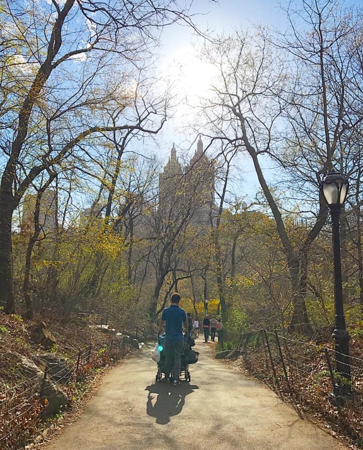 Central Park New York - atividades de graça em New York City