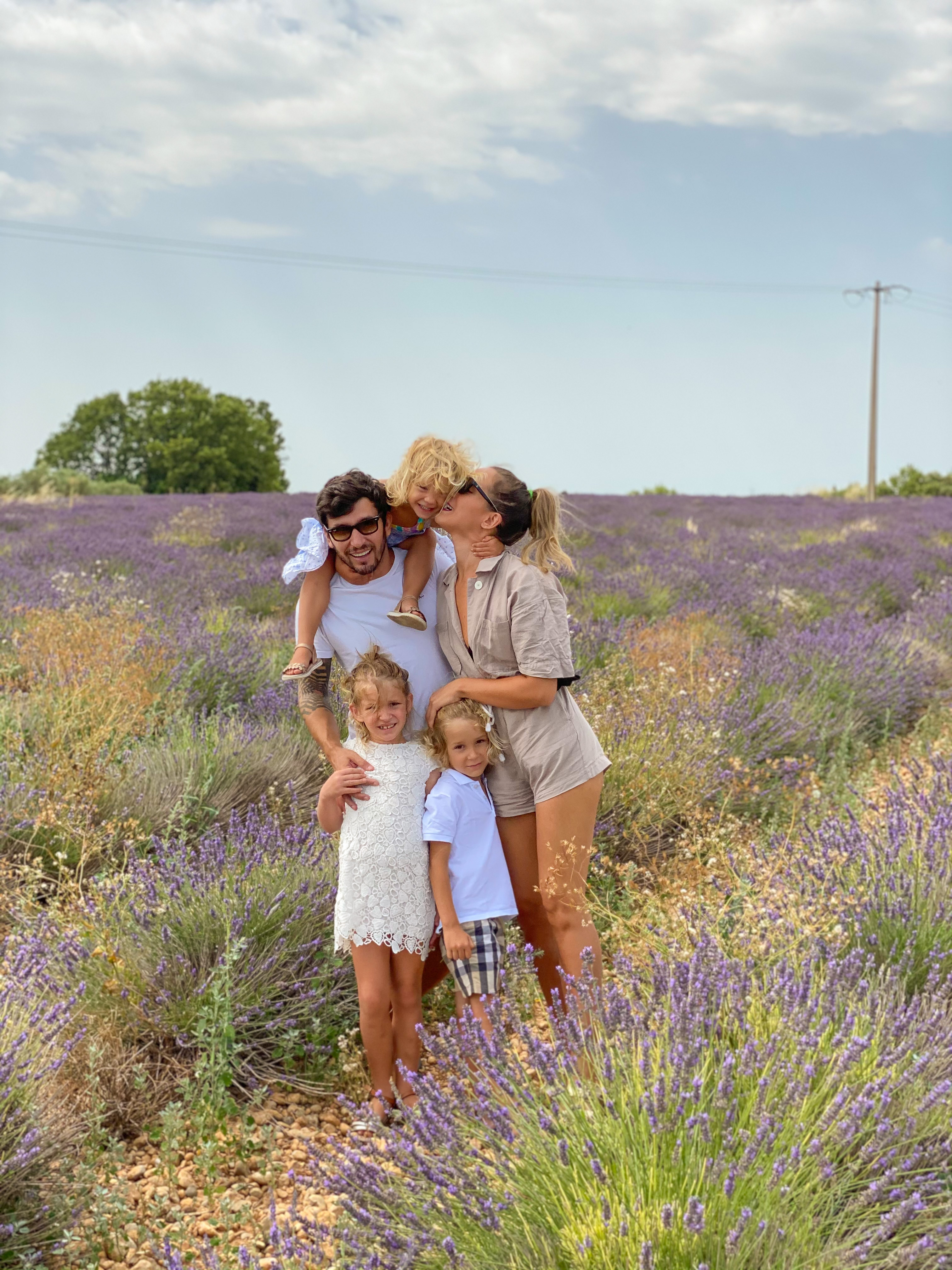 campo lavanda Provence Franç
