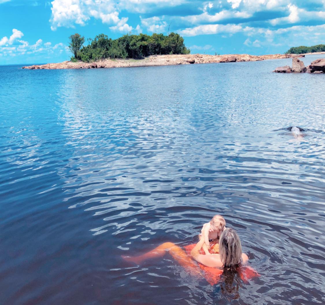Boto cor de rosa, golfinho rosa , Amazonia, floresta amazónica