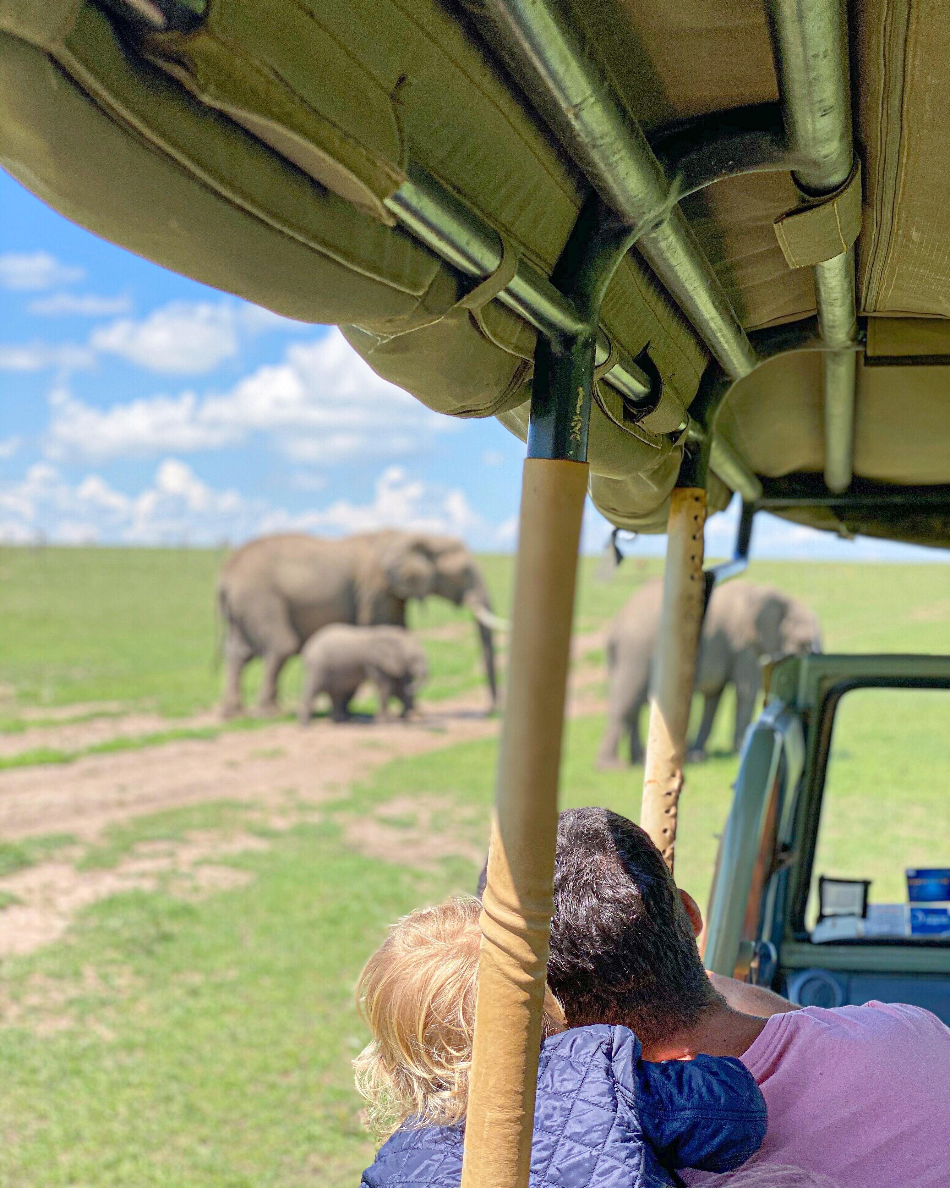 Safari com crianças safari com bebe quenia