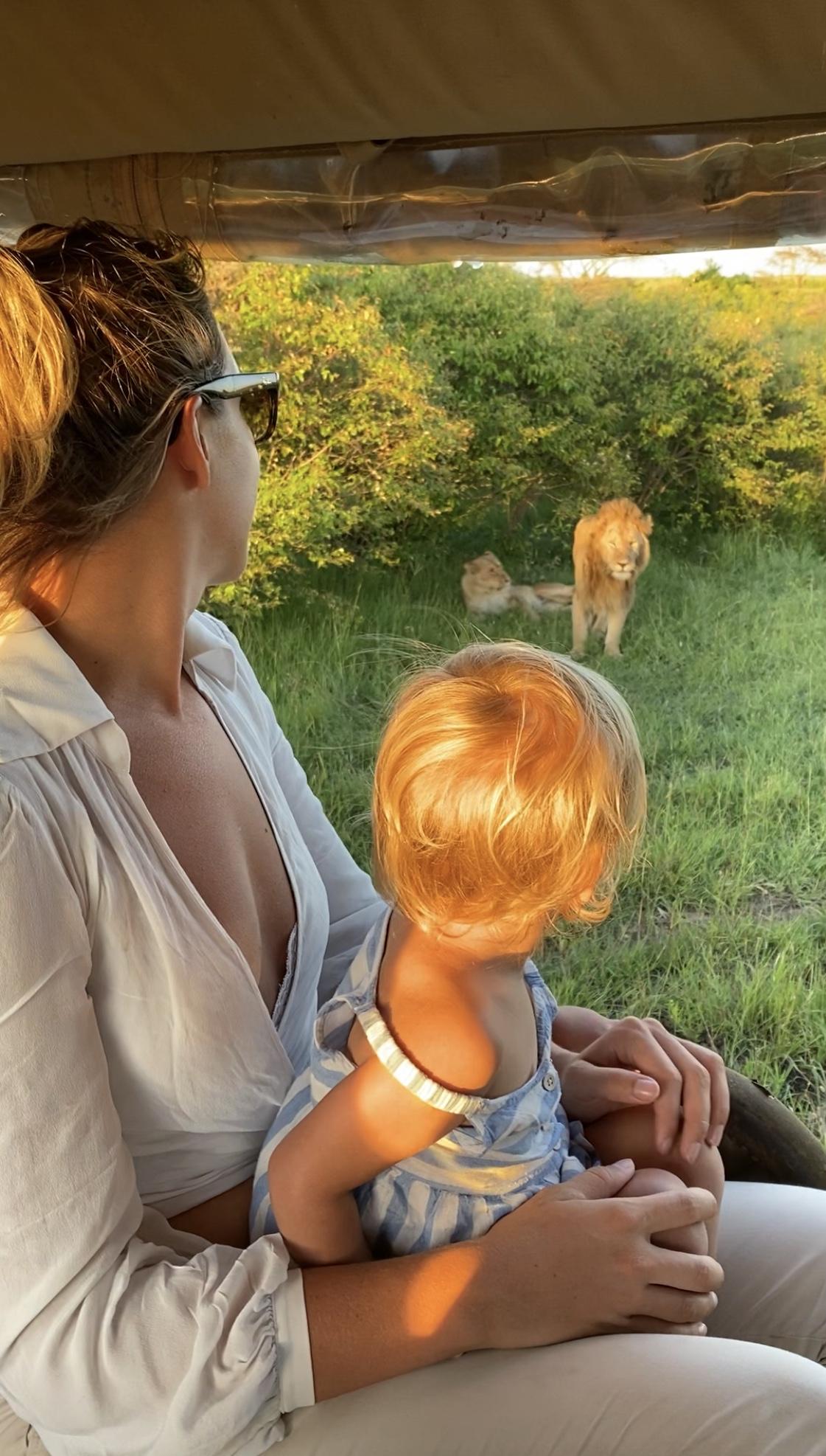 safari com crianças safari Quênia